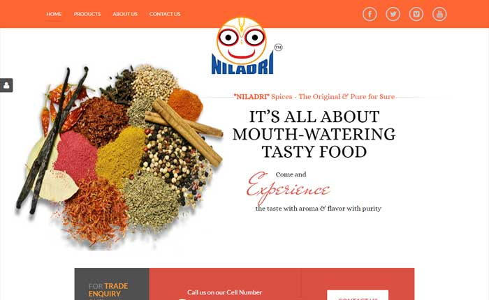 Website for Spices Manufacturer Industry
